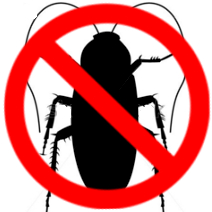 exterminator services in kitchener and waterloo