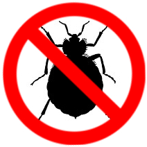 Bed bug extermination services in kitchener and waterloo